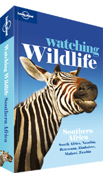 Lonely_Planet Watching Wildlife Southern Africa